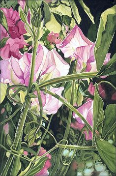 Jane Freeman Watercolor