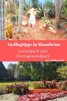 Parks, Germany Travel, Holiday Destinations, Places To Travel, Mannheim, Splash Pad, Road Trip Destinations, Environment, Parkas