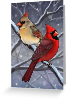 'Winter Cardinals' Greeting Card by Roxanne Gasperetti A pair of Northern Cardinals in the snow. Christmas Paintings, Christmas Art, Xmas, Winter Painting, Cardinal Birds, Bird Drawings, Painting Patterns, Bird Art, Painting Techniques