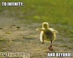 infinity  ;)