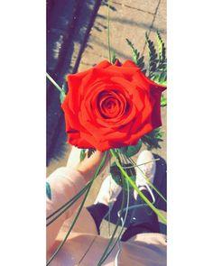 Outdoor Wedding Flowers, Rose, Plants, Girls, Slip On, Toddler Girls, Pink, Daughters, Maids