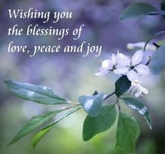 16 Delightful Love And Blessings Images Frases Good Morning Good