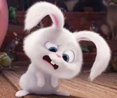 Travel Wallpaper, Disney Wallpaper, Rabbit Wallpaper, Cartoon Photo, Secret Life Of Pets, Cute Cartoon Wallpapers, Cute Bunny, Snowball, Cartoon Characters