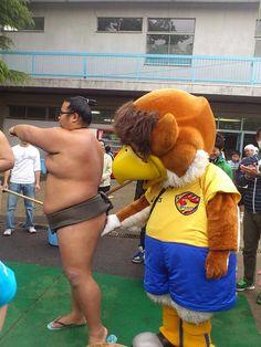 Sexual harassmet to sumo wrestler    ドメサカ板まとめブログ : アウェイ川崎に乗り込んだベガッ太さん、春日山部屋の力士と戯れる