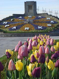 Floral Clock - Niagara Parks - Ontario, Canada
