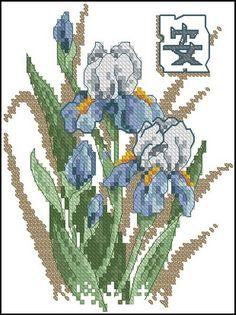 Dimensions 06869 Oriental Irises