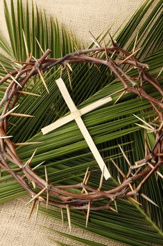 When Is Palm Sunday, and Why Does the Date Always Change?