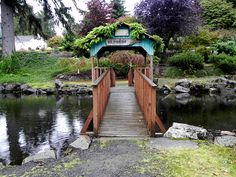 The duck pond by Mickey Thurman, via Flickr