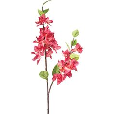 OKA Faux Bougainvillea Stem ($7.46) ❤ liked on Polyvore featuring home, home decor, floral decor, flowers, fleur, plants, pink, faux flower stems, silk flowers and artificial silk flowers