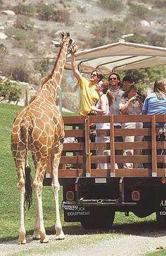 San Diego Wild Animal Park (and Botanical Park), California