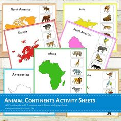 A total of 21 activity sheets! This is a Nienhuis inspired Montessori geography material in learning animals thriving in each 7 continents (Asia, Africa, Austr Continents Activities, Sorting Activities, Montessori Activities, Preschool Activities, Dinosaur Activities, Insect Activities, Continent Europe, America Continent, Continents And Oceans