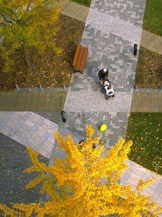 Place d'Youville in Montreal, Quebec, Canada design by Claude Cormier + Associés.
