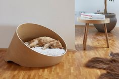 German-based company MiaCara, who originally produced only dog products, recently added a line of incredible modern cat furniture that is possibly some of the best I've seen.