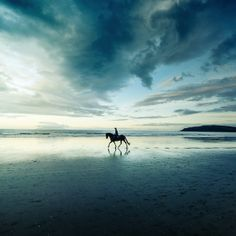 Heaven's oceanside landscapes by Andrew Smith (II) l #NewZealand