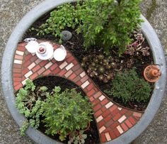 Mini Patio Mix Kit For Miniature Gardens Fairy or Gnome by Janit