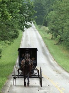 Amish in Adairville, Kentucky. wouldn't it be nice to live like this for a… Amish Country, Country Life, Country Roads, Country Charm, Big Bear Camping, Camping Spots, My Old Kentucky Home, Kentucky Derby, Louisville Kentucky