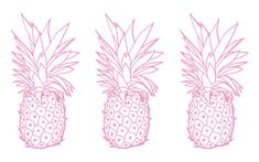 Pink white pineapples desktop Wallpaper background