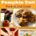 A simple and engaging way for toddlers to explore pumpkins- encourages sensory exploration, language development, problem solving, early math (sorting and patterning), and imaginative play.