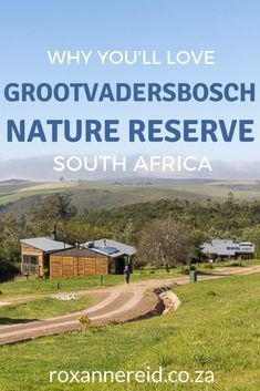 Ever wondered what Grootvadersbosch Nature Reserve is like? Find it between Swellendam and Heidelberg in the Western Cape. Discover everything you need to know from where to find it, the climate, the Grootvadersbosch forest and things to do in Grootvadersbosch like, hiking, mountain biking on the reserve and the adjoining Grootvadersbosch Conservancy. You'll also learn about Grootvadersbosch accommodation in self-catering cottages, Grootvadersbosch camping and Grootvadersbosch glamping. Slow Travel, Travel Tips, Visit South Africa, Wildlife Safari, Forest Road, Go Hiking, Bike Trails, Nature Reserve, Photo Location