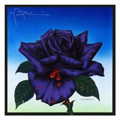 Thin Lizzy Black Rose Album Cover Original by Jim Fitzpatrick Thin Lizzy Black Rose, Heavy Metal, Gary Moore, Rock And Roll, Roisin Dubh, Jim Fitzpatrick, Classic Album Covers, Louis Armstrong, Vintage Vinyl Records