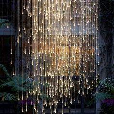 Wow! Beautiful #hanging #fairylight add a brilliant pop as a #backdrop! Photo via #amidolling #bruce munro