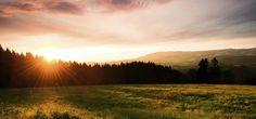 Erlebe den größten Wasserfall Deutschlands: 3 Tage im Schwarzwald mit Frühstück, 3-Gänge-Dinner, Ayurveda Massage und Gästekarte ab 99 € - Urlaubsheld | Dein Urlaubsportal