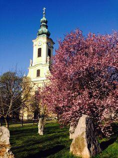 https://www.facebook.com/mertutaznijo.cafeblog.hu/photos  Óbudai Szent Péter És Pál Templom.    Hungary   -    Budapest