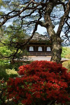 ginkakuji 120505-1@kyoto