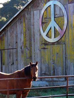 Peace | This peace sign hangs on a barn near a produce store… | Flickr - Photo Sharing!