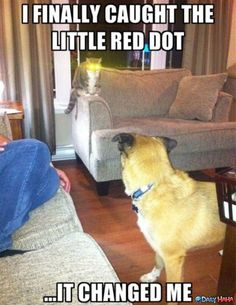The red dot fear it.