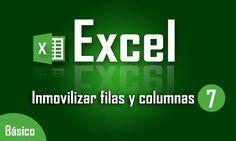 Como Inmovilizar filas y columnas en Excel - Capítulo 7