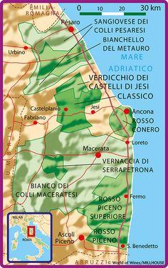 Marche i Italia Italia, Wine