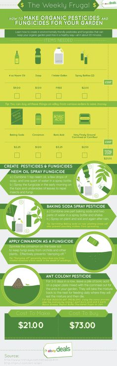 How to Make Organic Pesticides and Fungicides for Your Garden – [Instructographic]   eBay Deals Blog