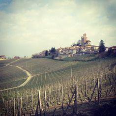 Il castello di Serralunga e i suoi vigneti #serralunga - @gio_978
