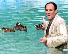 Tony Soprano and his ducks :P