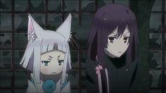 Kon & Natsume