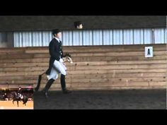Totilas Freestyle Tribute - the whole stick horse performance. This will make your day, especially if you're a dressage lover.