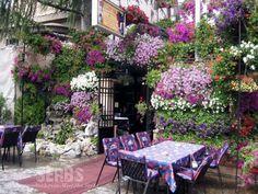 Skadarska St, Belgrade, Serbia. Beautiful places and wonderful food!