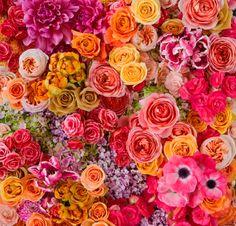 Louloudi Boutique Floral Design