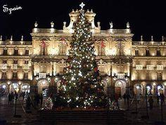 <b>Christmas</b>-<b>Around-the-World</b>-<b>christmas</b>-11096964-516-388.jpg