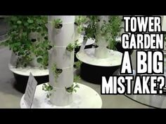 Why Buying a Tower Garden May be a BIG Mistake - YouTube