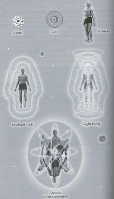 Development of the consciousness / Sacred Geometry <3