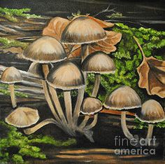 Mushrooms Paintings - Forest mushrooms by April Ward