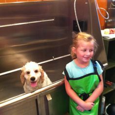 Haleigh takes Sully to B.Y.O.D. (bring your own dog) for a day of grooming. !