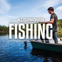 With over lakes and 54 different recorded species of fish, it's easy to… Algonquin Park, Hiking Tips, Us Map, Topographic Map, Lakes, Ontario, How To Find Out, Cinema, Cottage