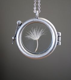 Pressed inside a glass locket is a single dandelion seed.this is really pretty.