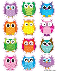 Complete Your Owl themed Classroom With These Colorful Shape Stickers