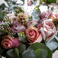 Peppermint, Quicksand and Memory Lane Roses