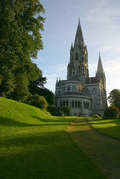 The green path to St. Fin Barre's Cathedral, Cork / Ireland (by Éole).