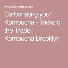 Carbonating your Kombucha - Tricks of the Trade | Kombucha Brooklyn